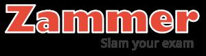 zammer-logos-light-&-dark